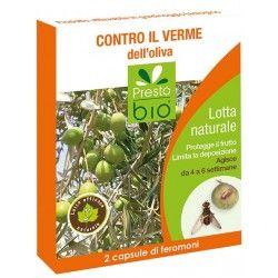 Feromoni contro la mosca dell'oliva