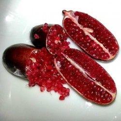 Limone caviale rosso (Microcitrus australasica)