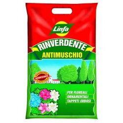 Rinverdente antimuschio kg. 2
