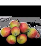 Alberi di Frutti Antichi Vendita Online